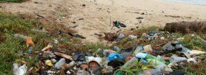 8 millioner tonn plast havner i havet hvert år hvor det forurenser og skaper lidelser og død for millioner av dyr. Det kan du heldigvis være med å redusere. Plast er lite nedbrytbart. Det betyr at […]